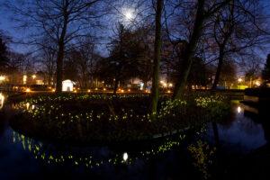 Winterlicht Schiedam